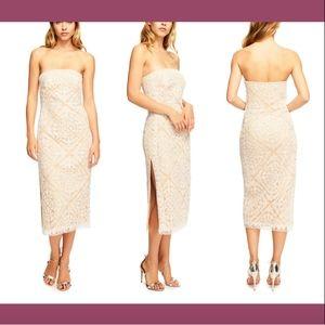 NEW Tadashi Shoji Elodie Embroided Strapless Dress